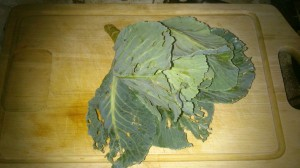 organically grown cabbage