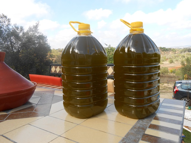 Freshly Pressed Olive Oil