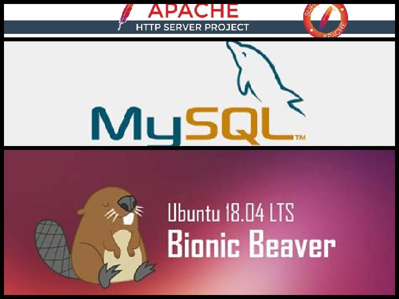 Ubuntu 18.04, WordPress, Stack Exchange, Ask Ubuntu, Algarve, Portugal