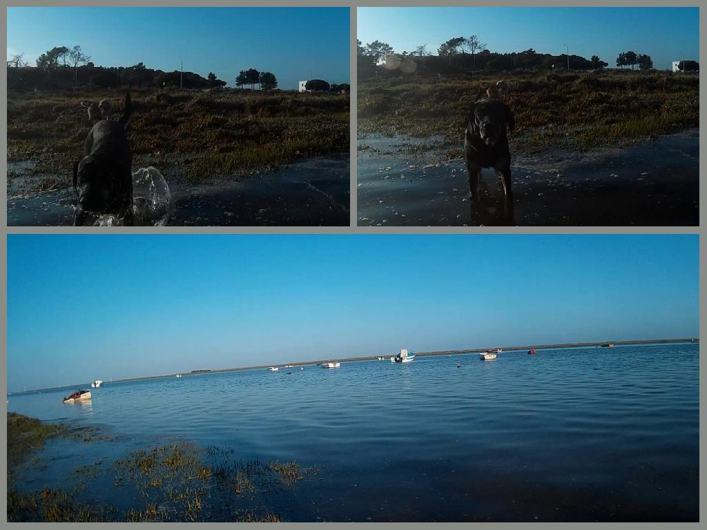 Ria Formosa, Belmonte, Luz de Tavira, Algarve, Portugal, nature reserve